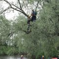 In tree ready to jump