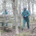 Paintball in woods